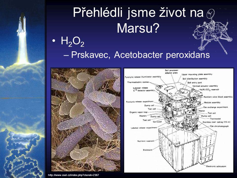 Přehlédli jsme život na Marsu? H 2 O 2 –Prskavec, Acetobacter peroxidans http://www.osel.cz/index.php?clanek=2367