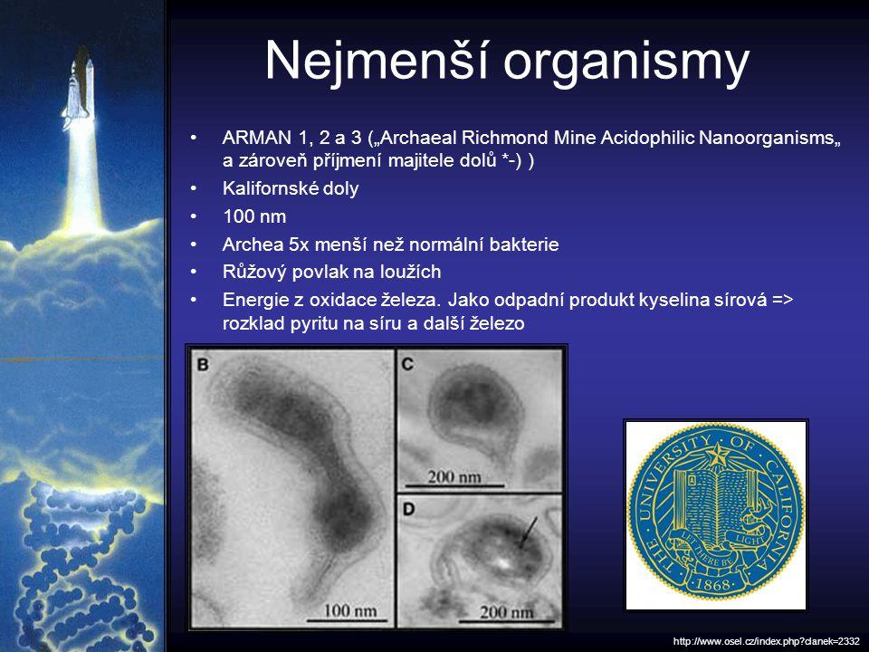 """Nejmenší organismy ARMAN 1, 2 a 3 (""""Archaeal Richmond Mine Acidophilic Nanoorganisms"""" a zároveň příjmení majitele dolů *-) ) Kalifornské doly 100 nm Archea 5x menší než normální bakterie Růžový povlak na loužích Energie z oxidace železa."""