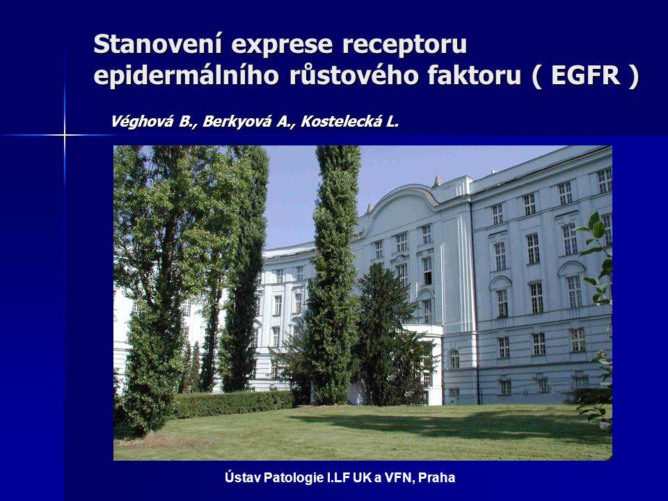 Stanovení exprese receptoru epidermálního růstového faktoru ( EGFR ) Véghová B., Berkyová A., Kostelecká L. Ústav Patologie I.LF UK a VFN, Praha