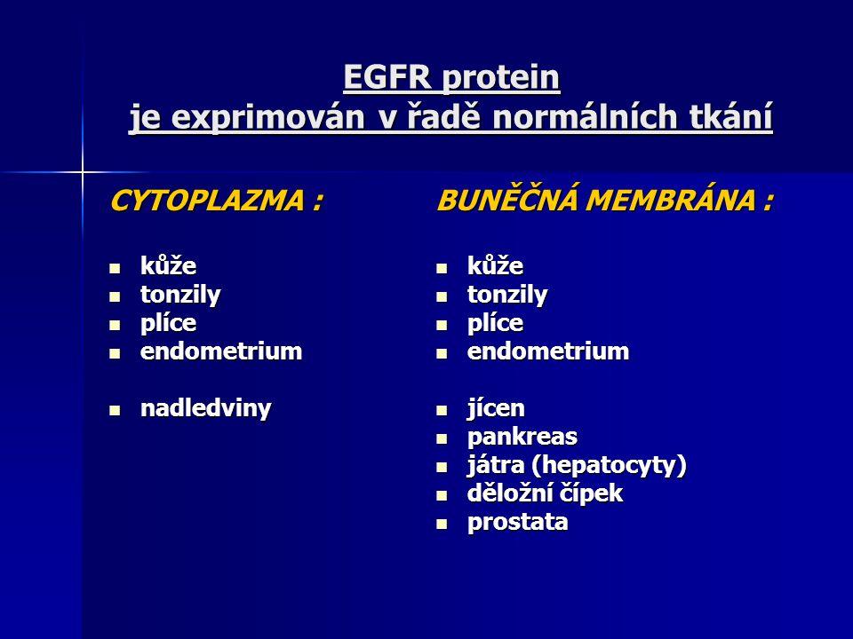 EGFR protein je exprimován v řadě normálních tkání CYTOPLAZMA : kůže kůže tonzily tonzily plíce plíce endometrium endometrium nadledviny nadledviny BU