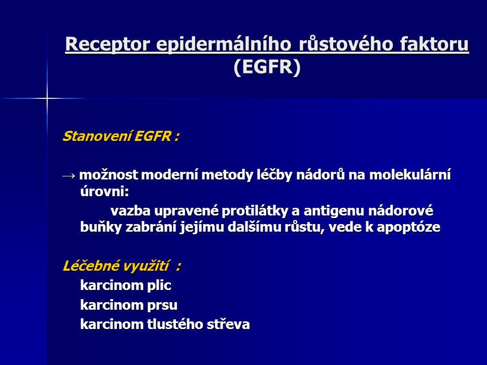 Receptor epidermálního růstového faktoru (EGFR) Stanovení EGFR : → možnost moderní metody léčby nádorů na molekulární úrovni: vazba upravené protilátk