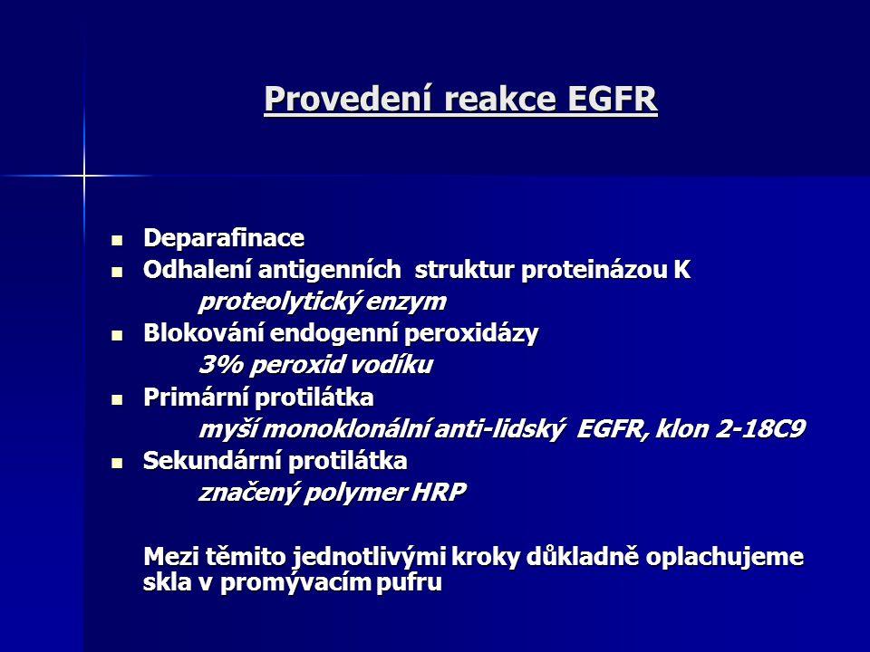 Provedení reakce EGFR Deparafinace Deparafinace Odhalení antigenních struktur proteinázou K Odhalení antigenních struktur proteinázou K proteolytický