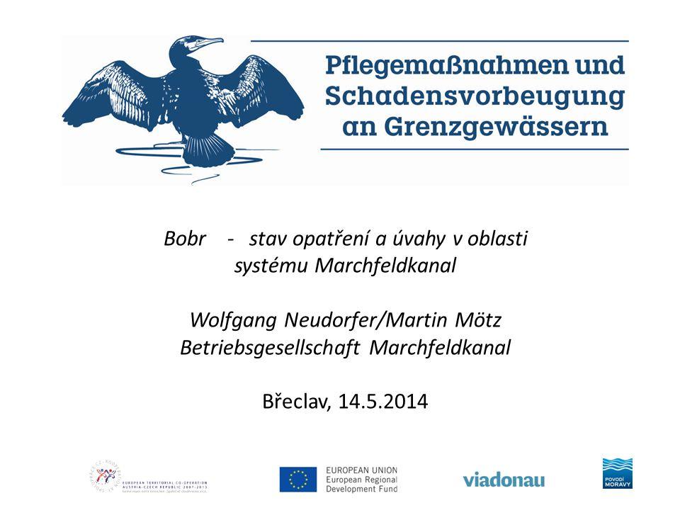 Bobr - stav opatření a úvahy v oblasti systému Marchfeldkanal Wolfgang Neudorfer/Martin Mötz Betriebsgesellschaft Marchfeldkanal Břeclav, 14.5.2014