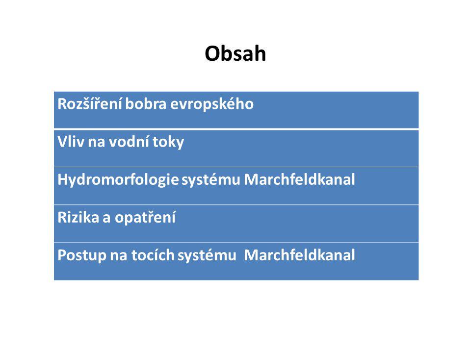 Obsah Rozšíření bobra evropského Vliv na vodní toky Hydromorfologie systému Marchfeldkanal Rizika a opatření Postup na tocích systému Marchfeldkanal