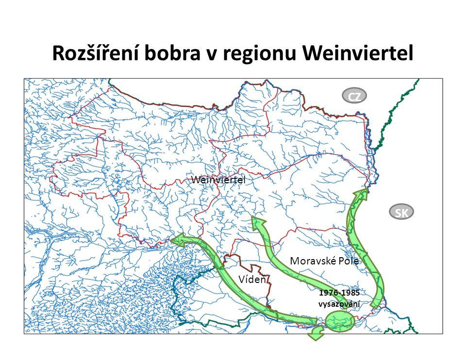 Rozšíření bobra v regionu Weinviertel Vídeň Moravské Pole Weinviertel CZ SK 1976-1985 vysazování