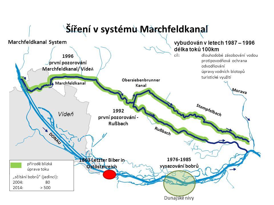 Síť toků v systému Marchfeldkanal 2.
