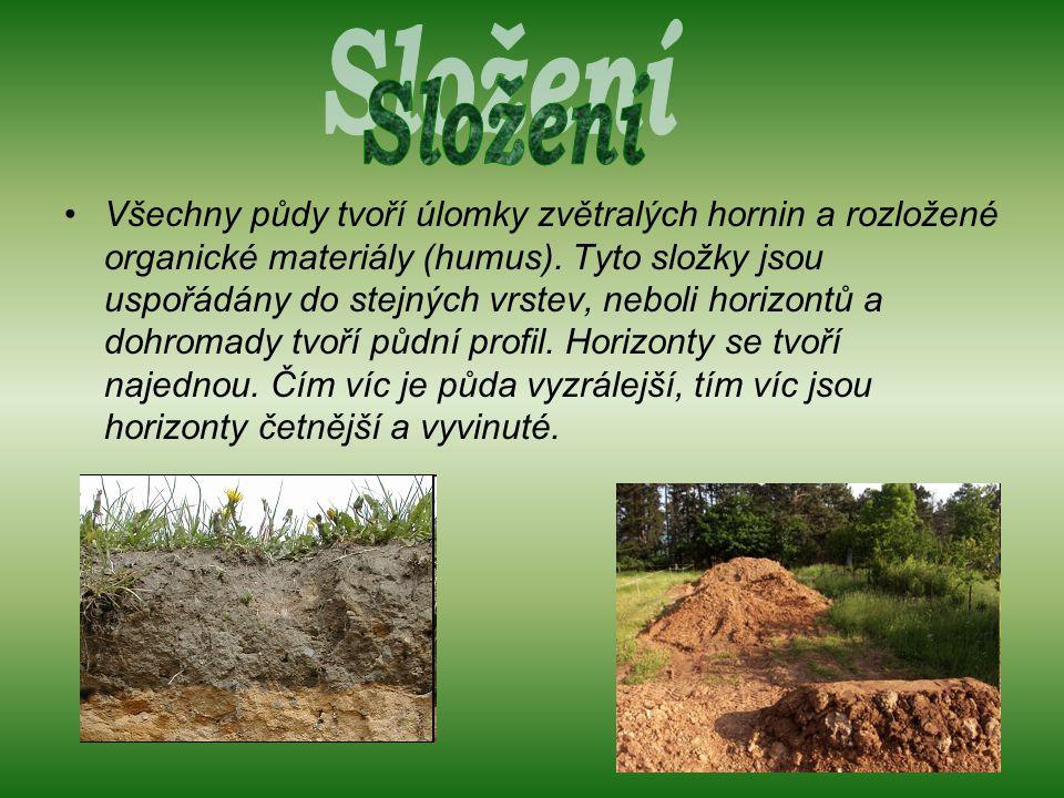 Všechny půdy tvoří úlomky zvětralých hornin a rozložené organické materiály (humus).