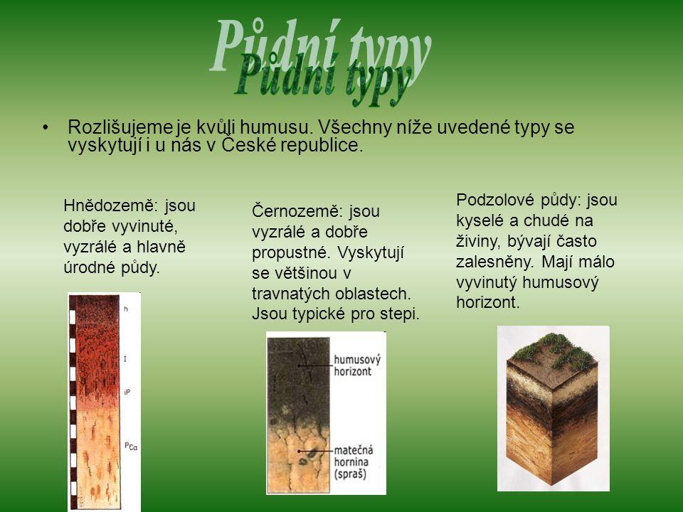 Rozlišujeme je kvůli humusu.Všechny níže uvedené typy se vyskytují i u nás v České republice.