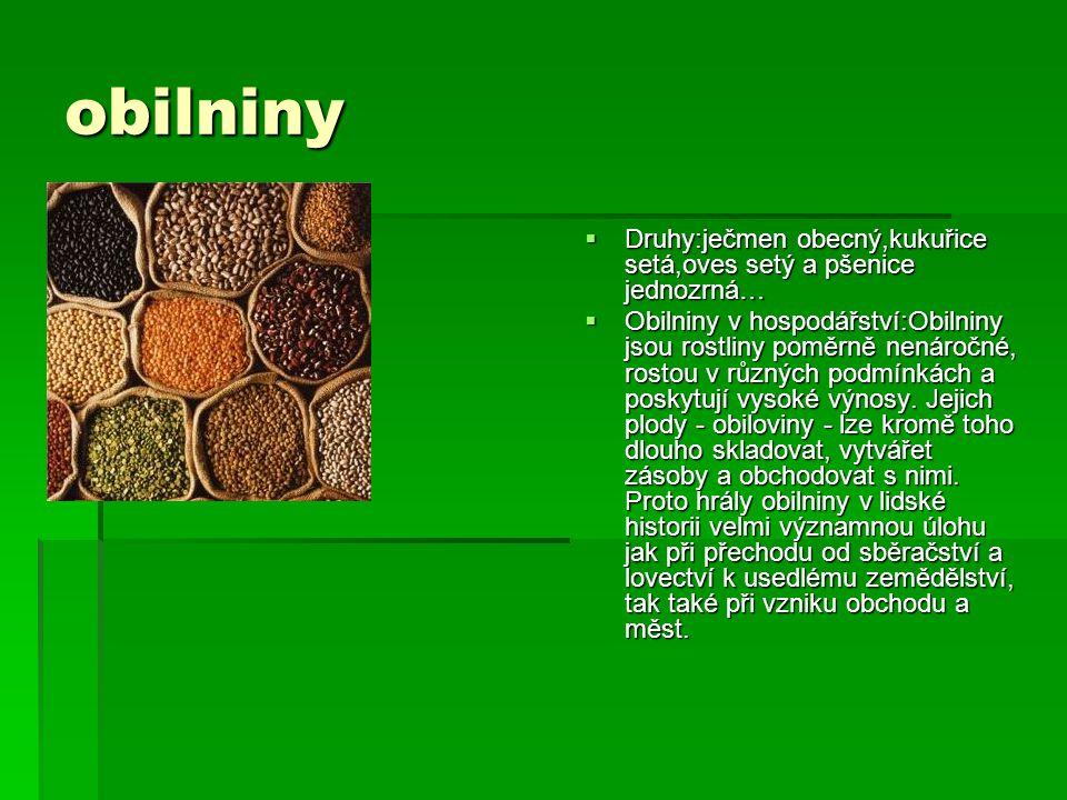 obilniny  Druhy:ječmen obecný,kukuřice setá,oves setý a pšenice jednozrná…  Obilniny v hospodářství:Obilniny jsou rostliny poměrně nenáročné, rostou v různých podmínkách a poskytují vysoké výnosy.