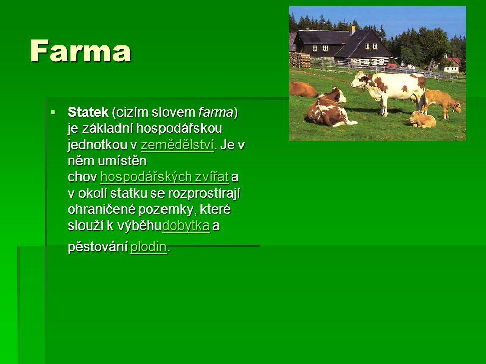 Farma  Statek (cizím slovem farma) je základní hospodářskou jednotkou v zemědělství. Je v něm umístěn chov hospodářských zvířat a v okolí statku se r