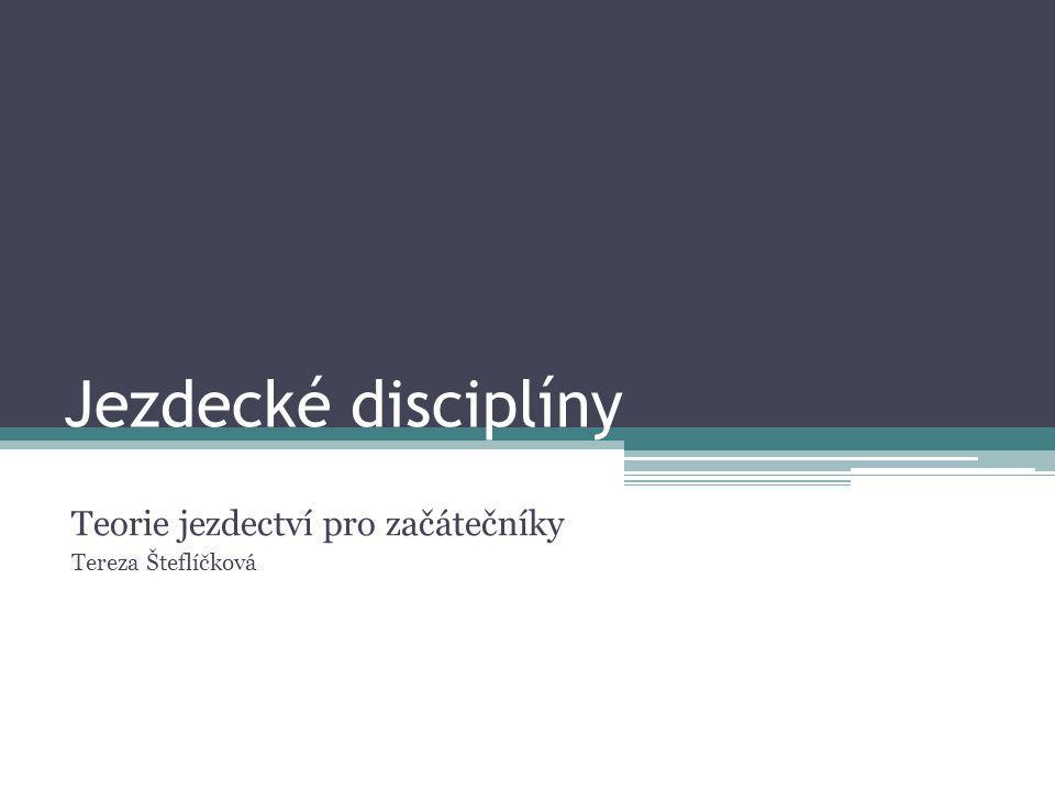 Jezdecké disciplíny Teorie jezdectví pro začátečníky Tereza Šteflíčková