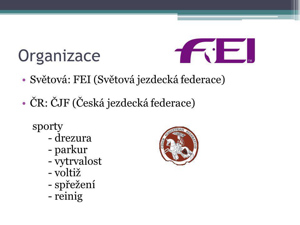 Organizace Světová: FEI (Světová jezdecká federace) ČR: ČJF (Česká jezdecká federace) sporty - drezura - parkur - vytrvalost - voltiž - spřežení - rei