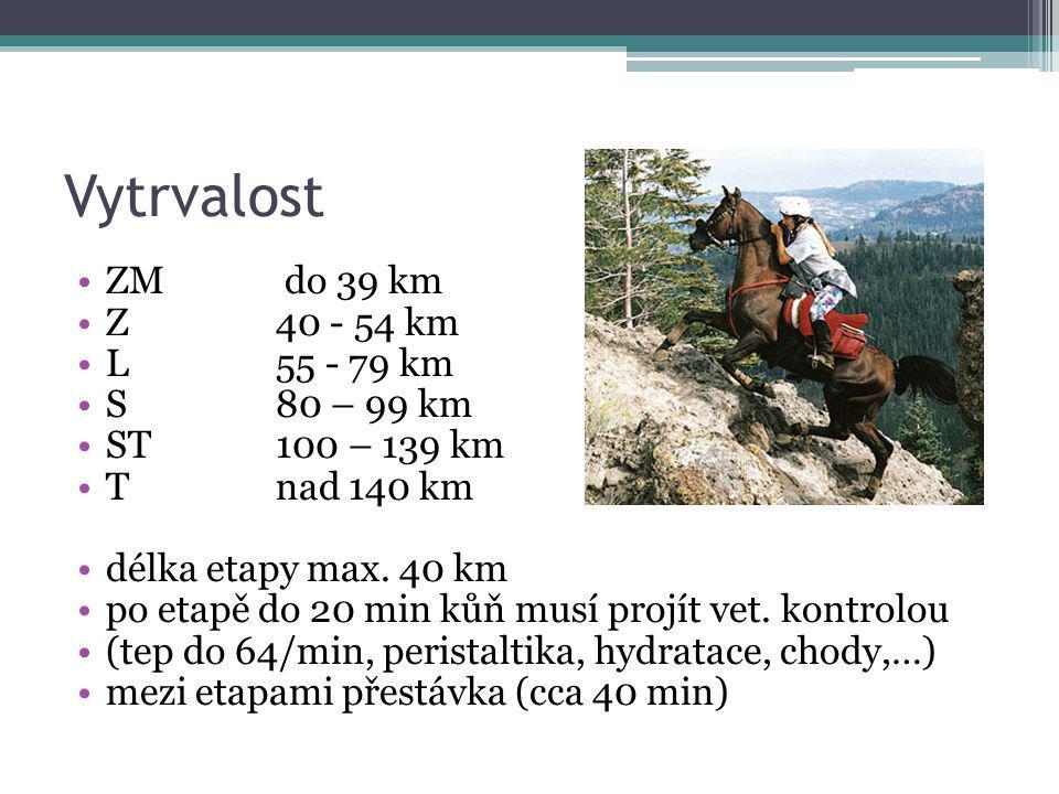 Vytrvalost ZM do 39 km Z40 - 54 km L55 - 79 km S80 – 99 km ST100 – 139 km Tnad 140 km délka etapy max. 40 km po etapě do 20 min kůň musí projít vet. k