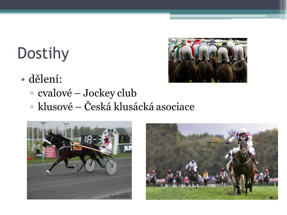 Dostihy dělení: ▫cvalové – Jockey club ▫klusové – Česká klusácká asociace