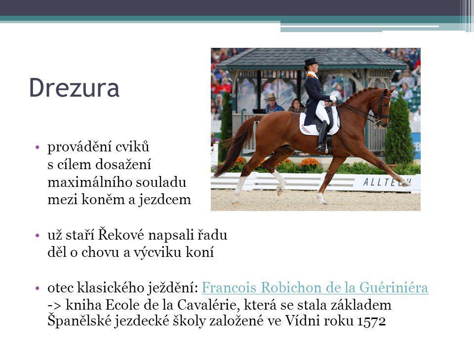 Drezura provádění cviků s cílem dosažení maximálního souladu mezi koněm a jezdcem už staří Řekové napsali řadu děl o chovu a výcviku koní otec klasick