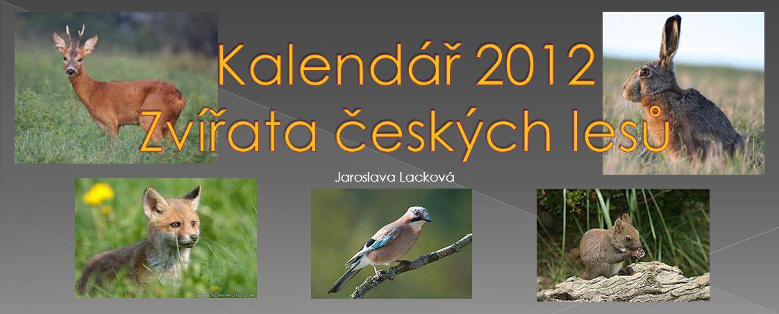 PONDĚLÍÚTERÝSTŘEDAČTVRTEKPÁTEKSOBOTANEDĚLE 1234 567891011 12131415161718 19202122232425 2627282930 Tetřev hlušec (Tetrao urogallus) patří k největším kurovitým ptákům.