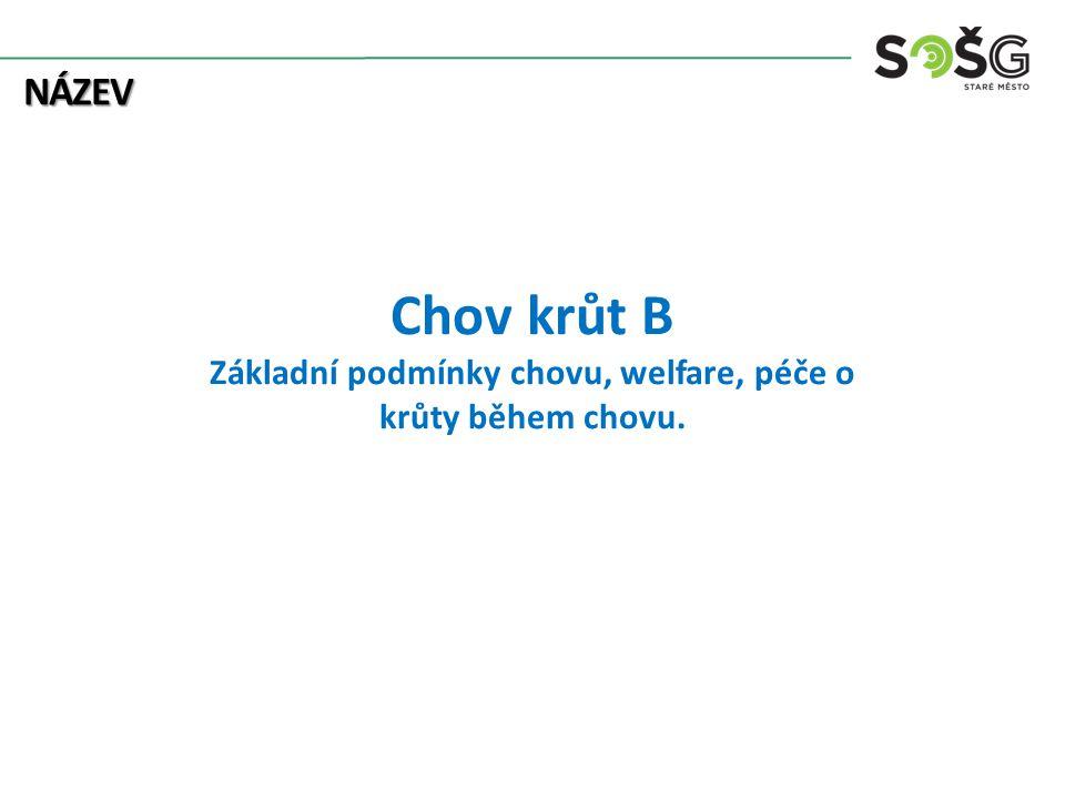 Chov krůt B Základní podmínky chovu, welfare, péče o krůty během chovu. NÁZEV
