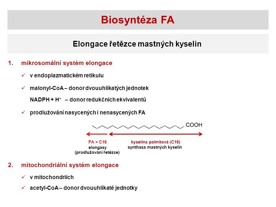 Biosyntéza FA Elongace řetězce mastných kyselin mikrosomální systém elongace1.