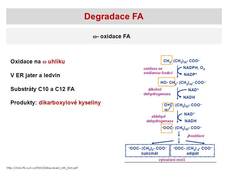 Degradace FA  - oxidace FA Oxidace na  uhlíku V ER jater a ledvin Substráty C10 a C12 FA Produkty: dikarboxylové kyseliny http://che1.lf1.cuni.cz/html/Odbouravani_MK_3sm.pdf