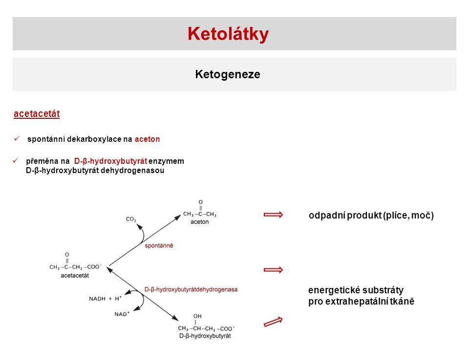 Ketolátky Ketogeneze acetacetát spontánní dekarboxylace na aceton přeměna na D-β-hydroxybutyrát enzymem D-β-hydroxybutyrát dehydrogenasou odpadní produkt (plíce, moč) energetické substráty pro extrahepatální tkáně