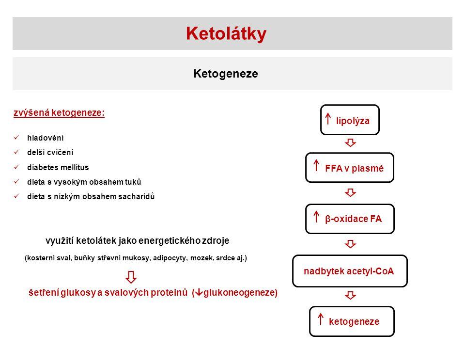 Ketolátky lipolýza FFA v plasmě β-oxidace FA nadbytek acetyl-CoA ketogeneze zvýšená ketogeneze: hladovění delší cvičení diabetes mellitus dieta s vysokým obsahem tuků dieta s nízkým obsahem sacharidů využití ketolátek jako energetického zdroje šetření glukosy a svalových proteinů (  glukoneogeneze) (kosterní sval, buňky střevní mukosy, adipocyty, mozek, srdce aj.) Ketogeneze