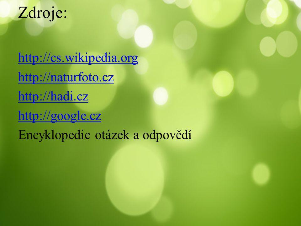 Zdroje: http://cs.wikipedia.org http://naturfoto.cz http://hadi.cz http://google.cz Encyklopedie otázek a odpovědí