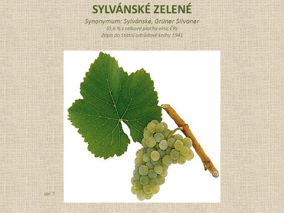 Synonymum: Sylvánské, Grüner Silvaner (0,6 % z celkové plochy vinic ČR) Zápis do Státní odrůdové knihy 1941 obr.