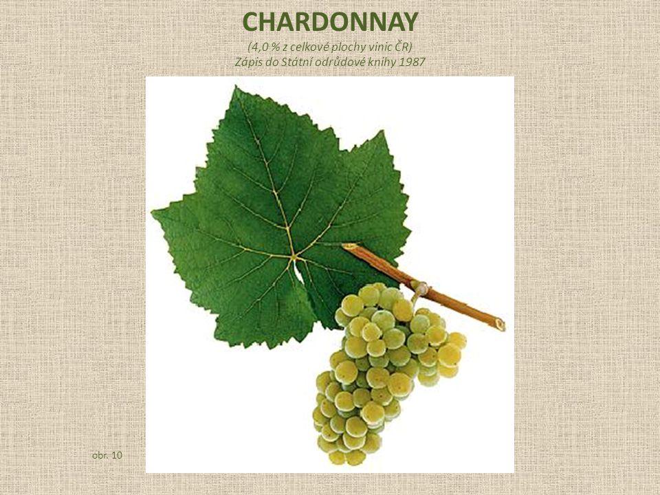 (4,0 % z celkové plochy vinic ČR) Zápis do Státní odrůdové knihy 1987 obr. 10