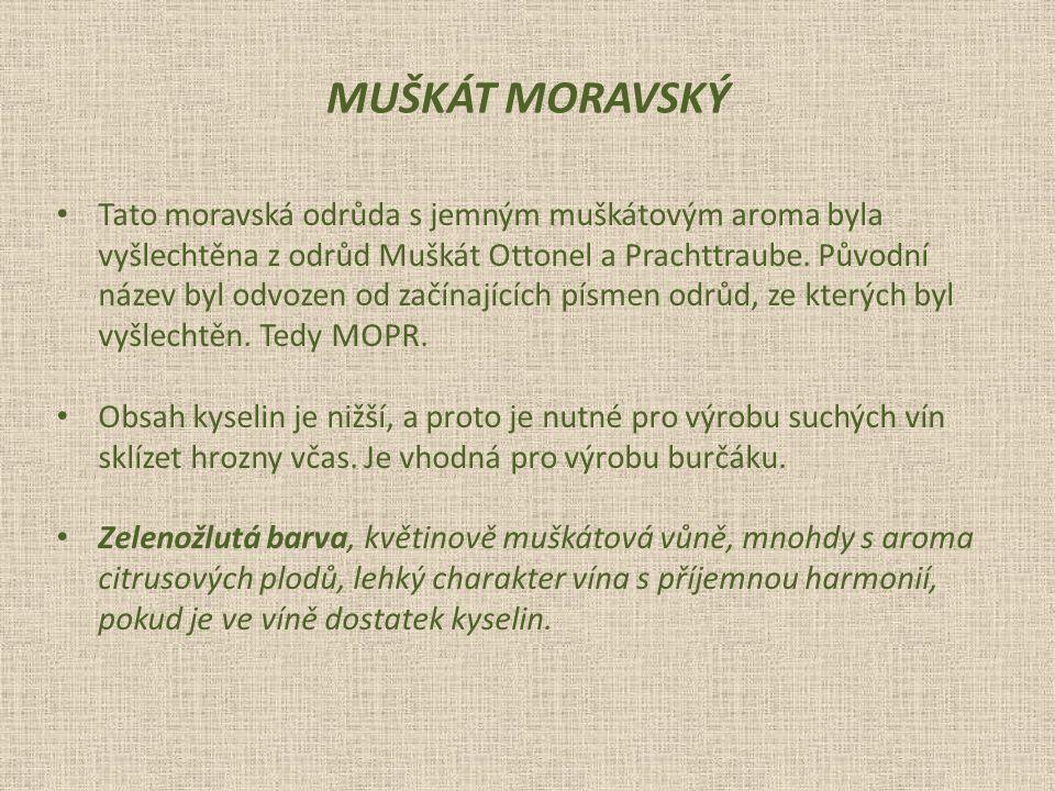 Tato moravská odrůda s jemným muškátovým aroma byla vyšlechtěna z odrůd Muškát Ottonel a Prachttraube.