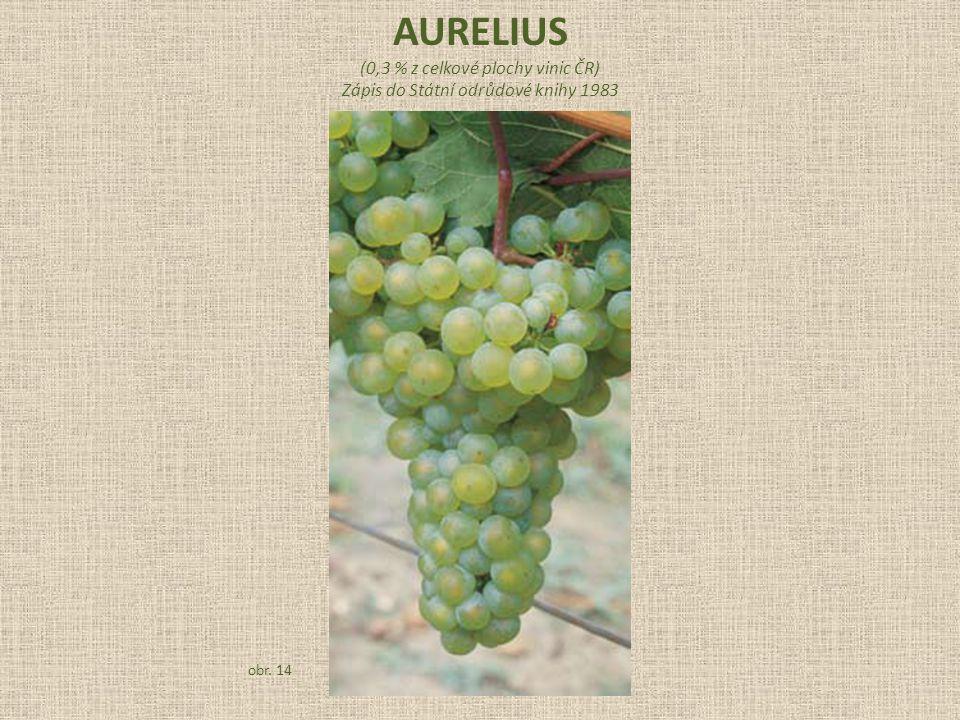 (0,3 % z celkové plochy vinic ČR) Zápis do Státní odrůdové knihy 1983 obr. 14