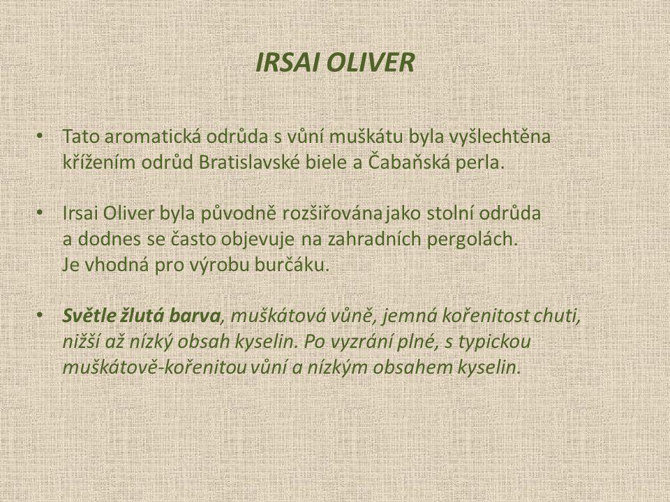 Tato aromatická odrůda s vůní muškátu byla vyšlechtěna křížením odrůd Bratislavské biele a Čabaňská perla.