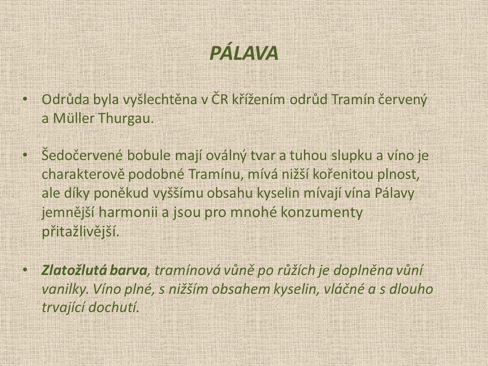 Odrůda byla vyšlechtěna v ČR křížením odrůd Tramín červený a Müller Thurgau.
