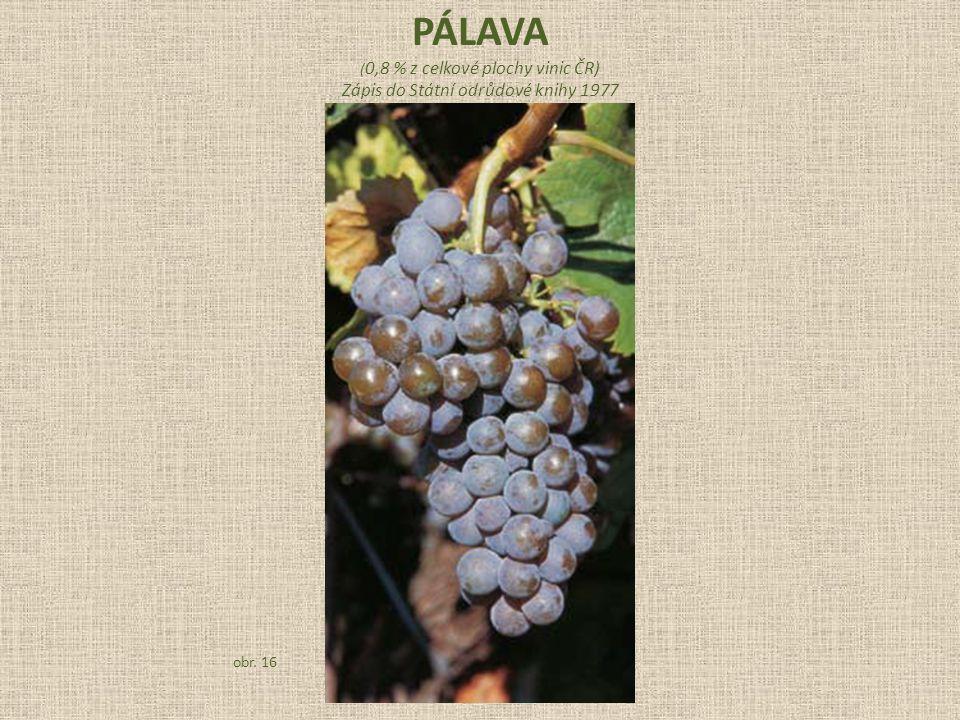 ( 0,8 % z celkové plochy vinic ČR) Zápis do Státní odrůdové knihy 1977 obr. 16