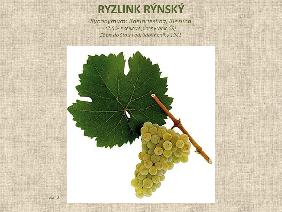 Synonymum: Rheinriesling, Riesling (7,5 % z celkové plochy vinic ČR) Zápis do Státní odrůdové knihy 1941 obr.