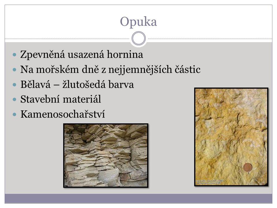 Opuka Zpevněná usazená hornina Na mořském dně z nejjemnějších částic Bělavá – žlutošedá barva Stavební materiál Kamenosochařství