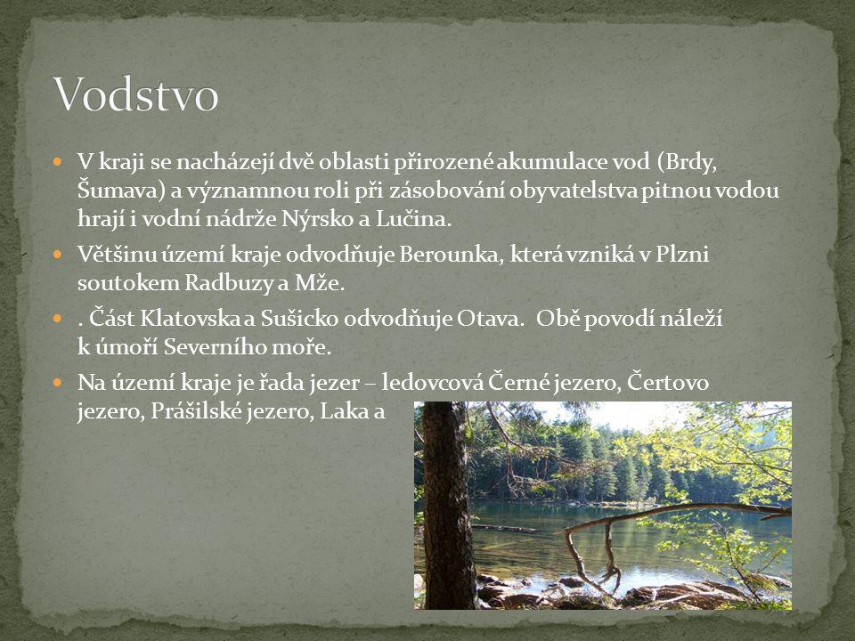 V kraji se nacházejí dvě oblasti přirozené akumulace vod (Brdy, Šumava) a významnou roli při zásobování obyvatelstva pitnou vodou hrají i vodní nádrže