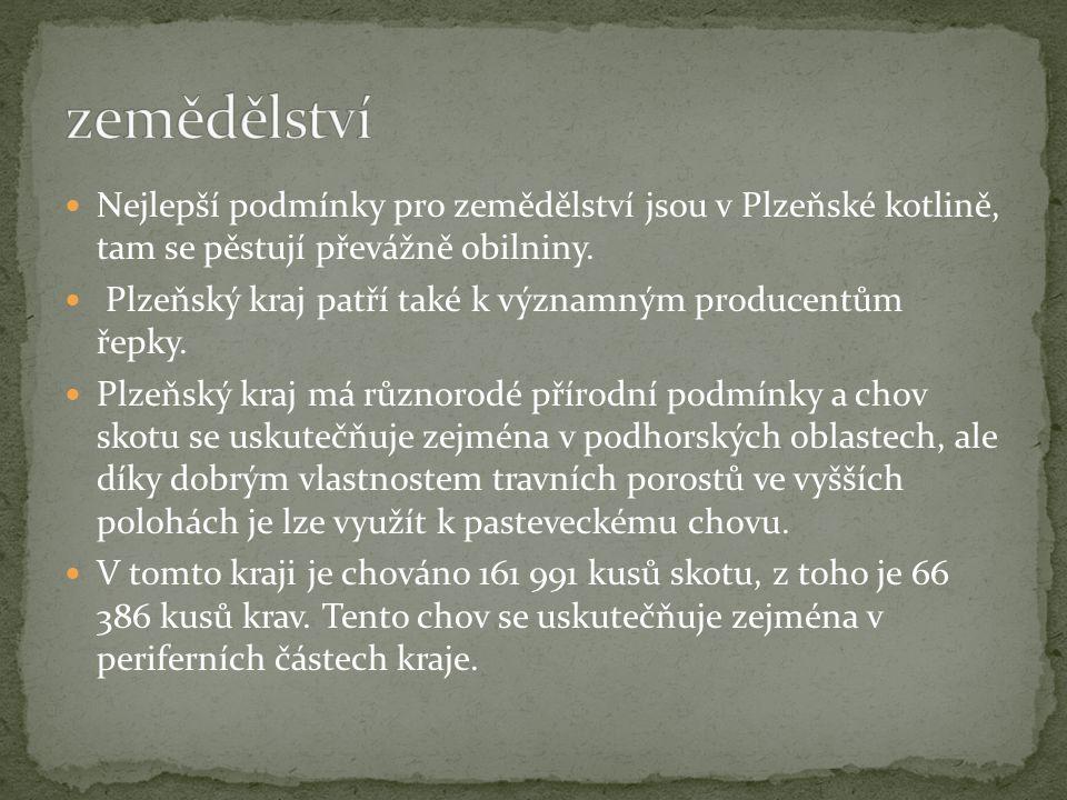 Nejlepší podmínky pro zemědělství jsou v Plzeňské kotlině, tam se pěstují převážně obilniny. Plzeňský kraj patří také k významným producentům řepky. P