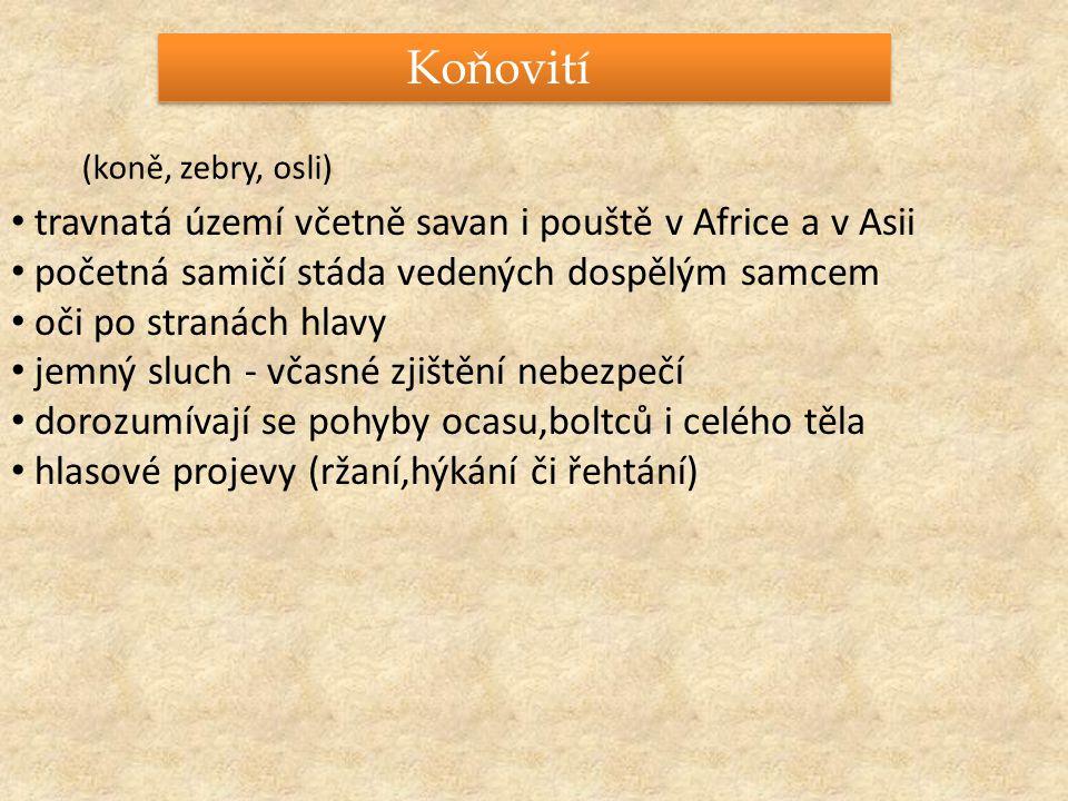 http://projekty.skautlib.cz/dva-tydny-skautingu/adopce.aspx http://cs.wikipedia.org/wiki/K%C5%AF%C5%88