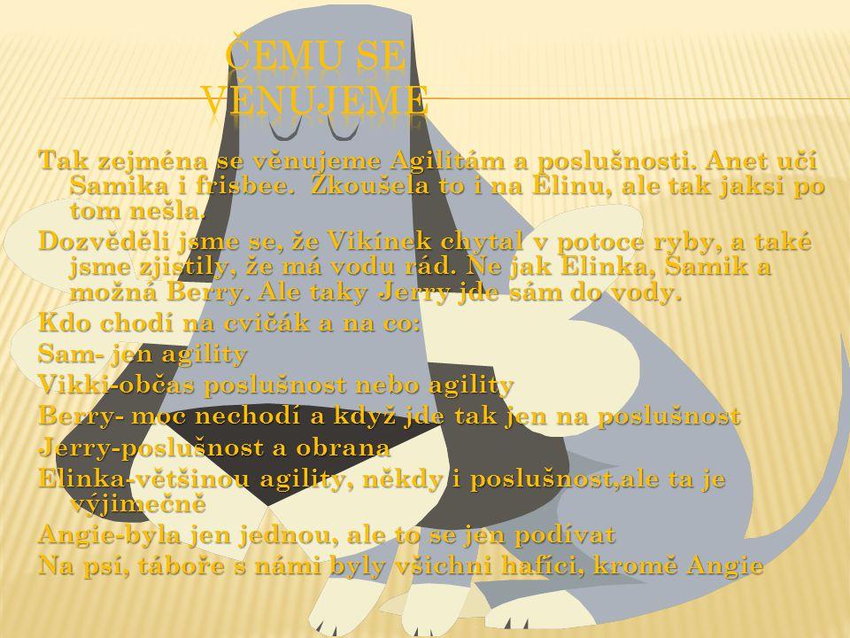 Jméno: Sam Přezdívka: Sam, Samik, Hamik, Tlamik, Šampión, Samouš, Samiček, Samuel, Truhlík, Samin, Smeták Plemeno: kříženec, pravděpodobně teriéra Vzhled: malý, zlato-hnědý, hrubosrstý pejsek Datum narození: 24.12.2001 Majitel: Marie Krčmová, Aneta Krčmová Země narození/Pobyt: ČR Výcvikářka: Aneta Krčmová, Vendula Krčmová