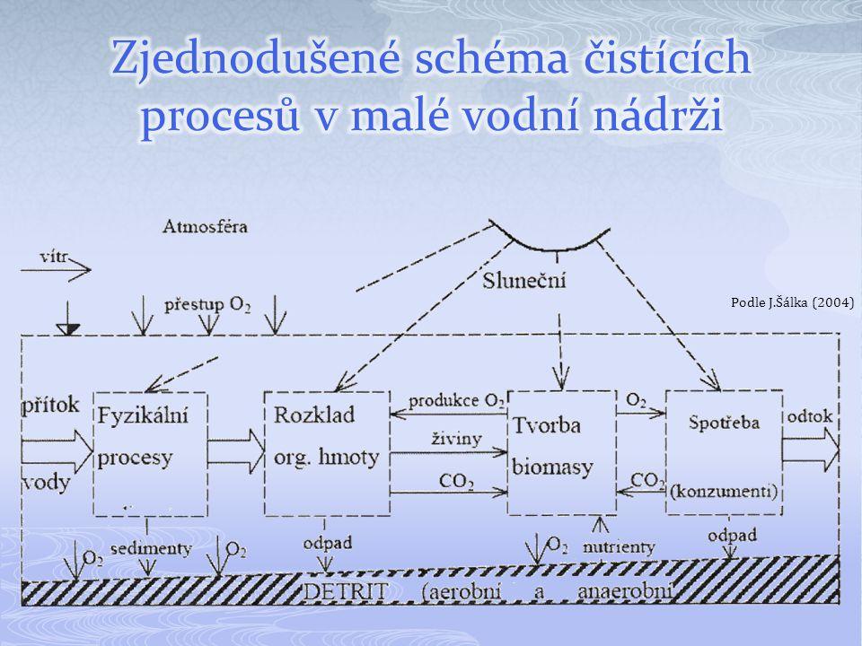 Infiltrace odpadních vod  půdní (zemní) filtr  vsakovací příkop či nádrž  hnojivé závlahy Kořenová čistírna s horizontálním prouděním 1- přívod odpadní vody;2 – vyrovnávací jímka; 3 – těsnění PE, PVC;4 – filtr; 5,11 – šachtice; 6 – rozdělovací potrubí a sběrný drén; 7 – štěrkový pás;8 – jímka; 9 – filtrační prostředí;10 – makrofyta; 12 – odpadní potrubí;13 – regulační šachtice; 14 – uzávěr;15 - odpad