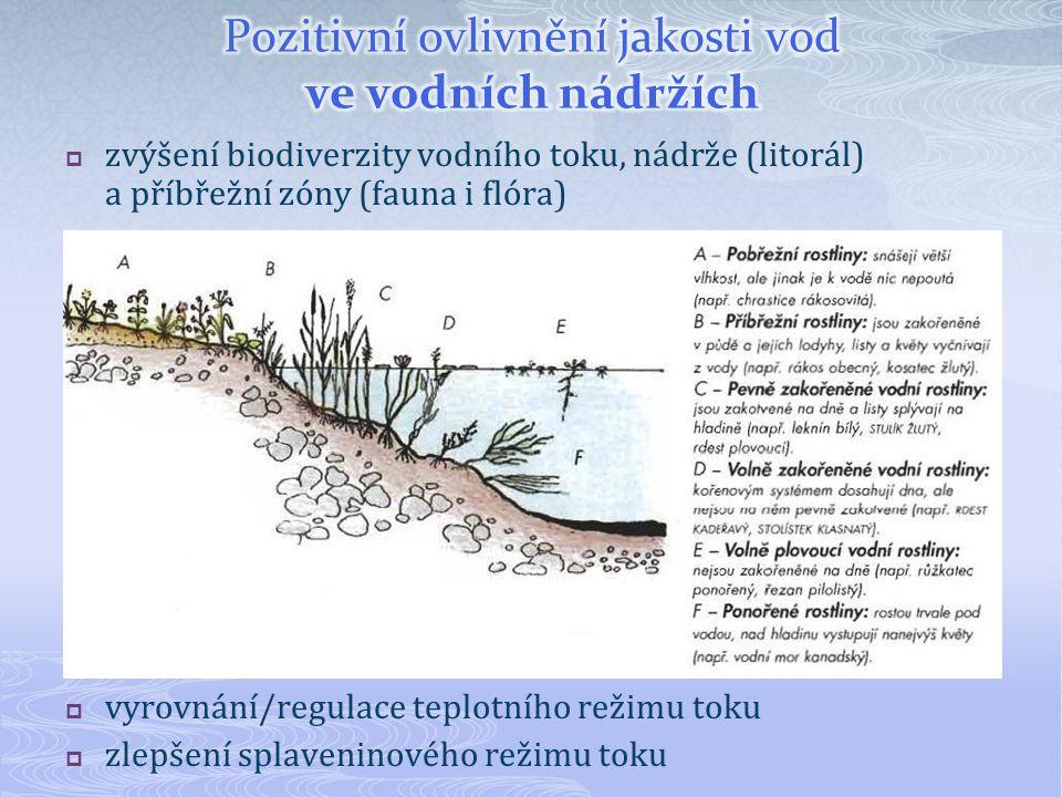 TypVýhodaNevýhoda MVN (rybník, retenční n.)snižují NRL, zvyšují jakostnutná kvalifikovaná obsluha mokřady přírodnísamočistící procesynáročnost na zábor plochy biologické nádržedominantně čistící funkcenutná kvalifikovaná obsluha půdní filtryčištění a dočištění vodnízká kapacita, rizika kolmatace infiltrační nádržesamočistící procesynízká kapacita, zábor plochy revitalizace kanálůpoutání NO 3 břehovou veg.investičně nákladné