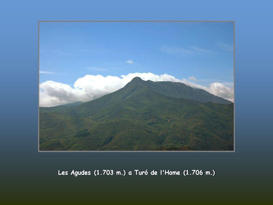 Od Turó de l'Home (1.706 m.)