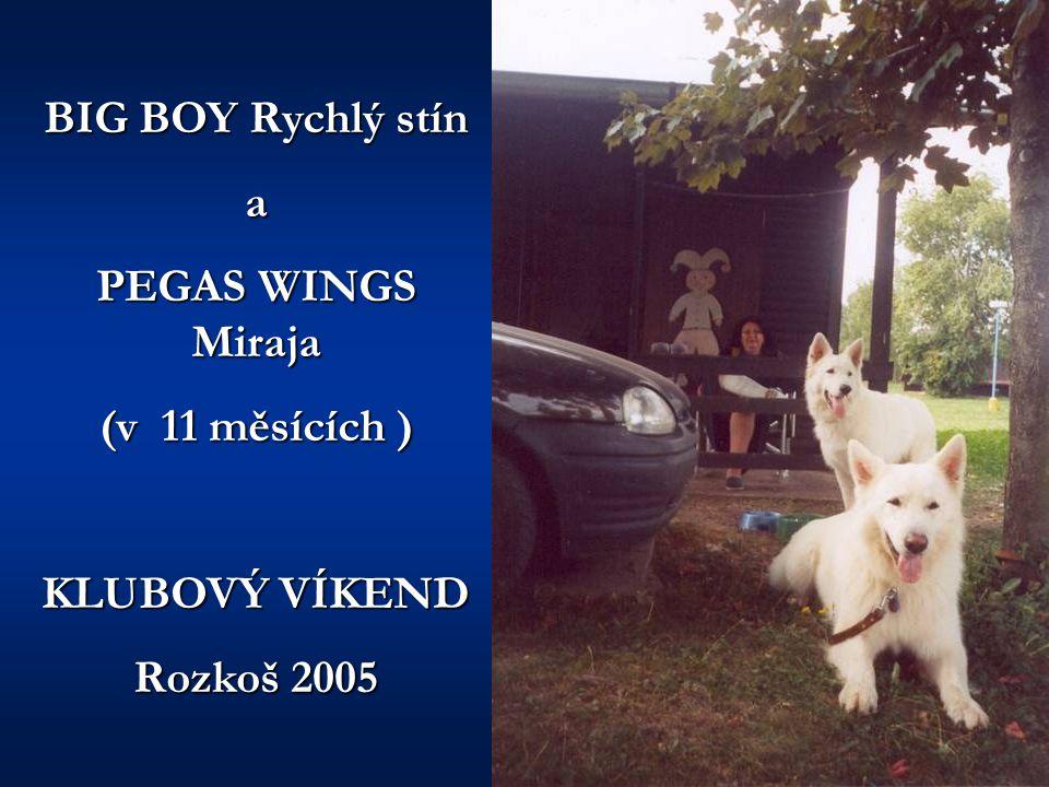 BIG BOY Rychlý stín a PEGAS WINGS Miraja (v 11 měsících ) KLUBOVÝ VÍKEND Rozkoš 2005