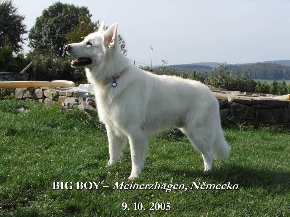 BIG BOY – Meinerzhagen, Německo 9. 10. 2005 9. 10. 2005