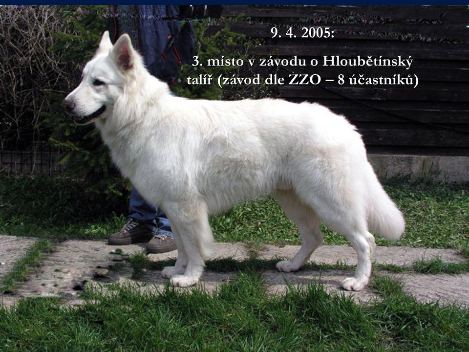 9. 4. 2005: 3. místo v závodu o Hloubětínský talíř (závod dle ZZO – 8 účastníků)
