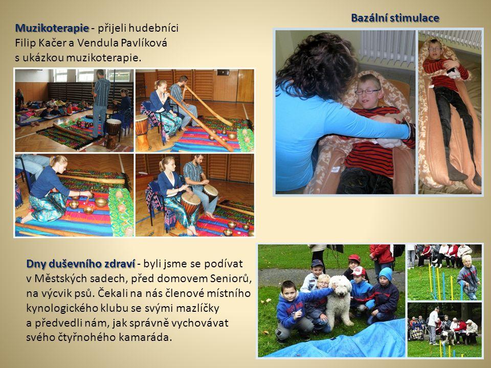 Bazální stimulace Muzikoterapie Muzikoterapie - přijeli hudebníci Filip Kačer a Vendula Pavlíková s ukázkou muzikoterapie. Dny duševního zdraví Dny du