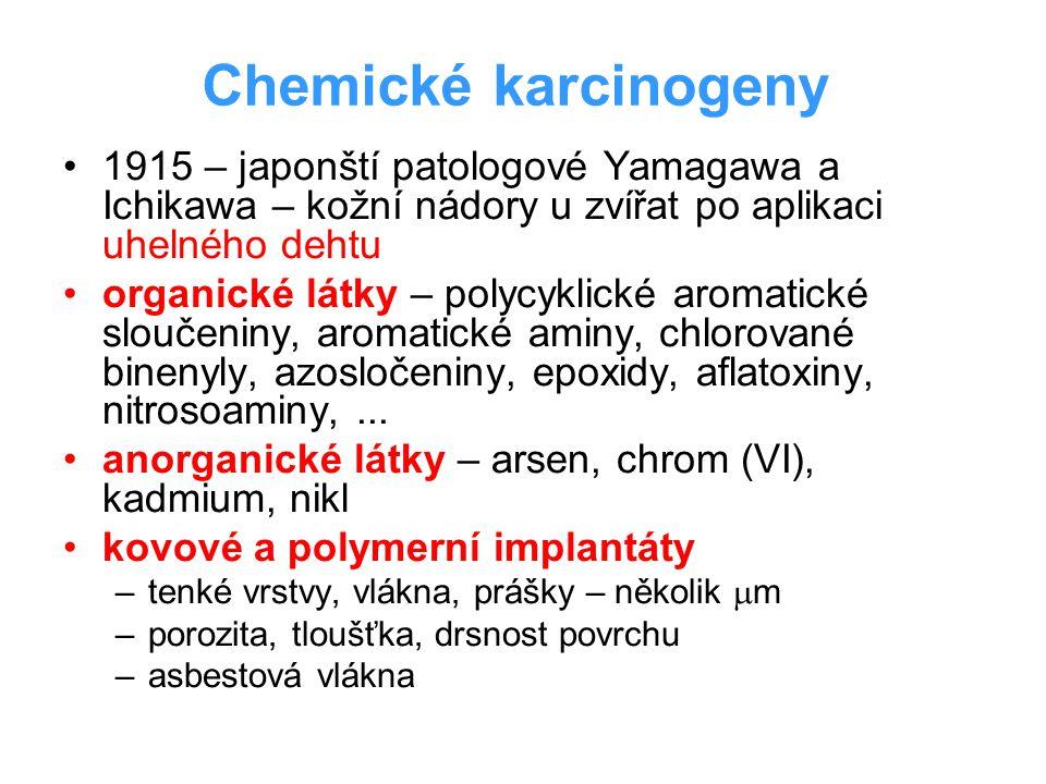 Chemické karcinogeny 1915 – japonští patologové Yamagawa a Ichikawa – kožní nádory u zvířat po aplikaci uhelného dehtu organické látky – polycyklické