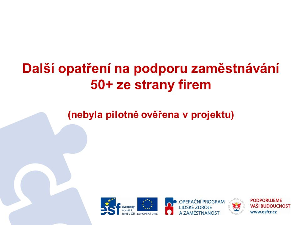 Další opatření na podporu zaměstnávání 50+ ze strany firem (nebyla pilotně ověřena v projektu)
