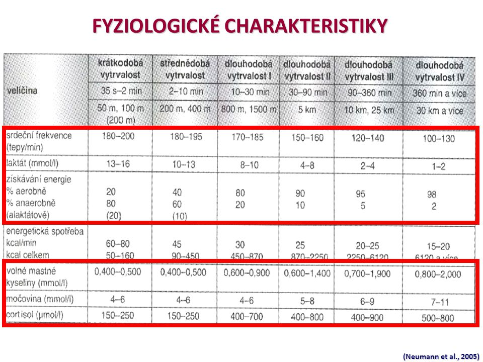 (Neumann et al., 2005) FYZIOLOGICKÉ CHARAKTERISTIKY