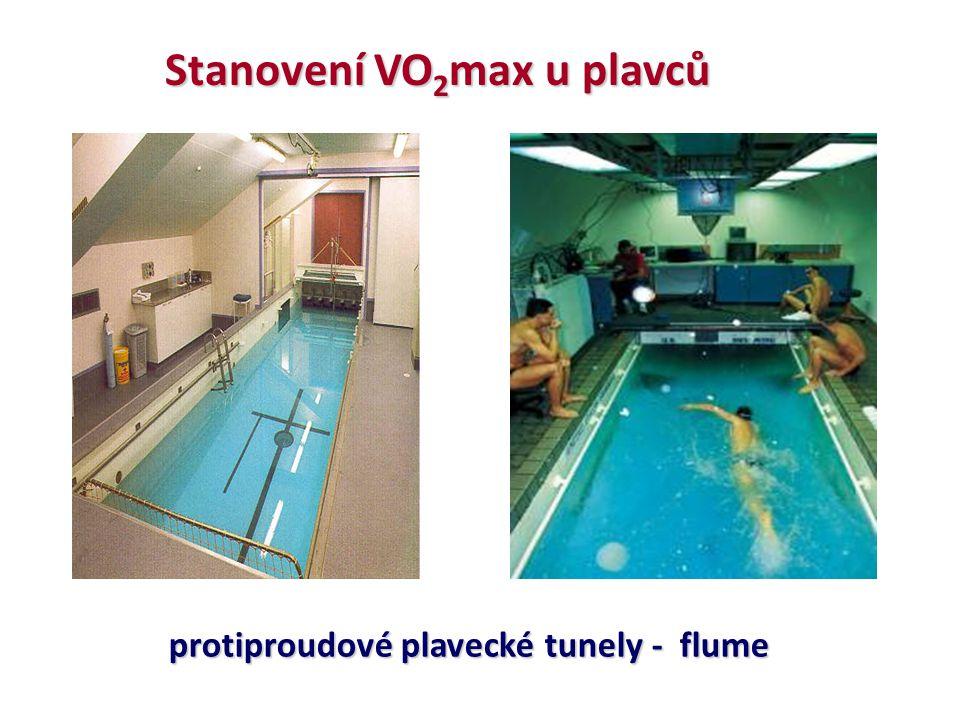 Stanovení VO 2 max u plavců protiproudové plavecké tunely - flume